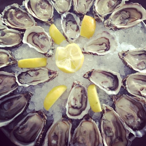 mrginandtonic:  frenchtrotters:  #Oysters of #Marennes (à Marennes)  So much happiness on a platter…