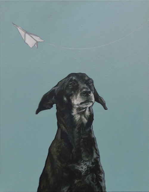 "hoveringcat:  I think the dog's expression in this painting is superb - is it unaware or simply unimpressed? ""Doggy"" is an oil painting on canvas by Dutch artist Iet Langeveld."