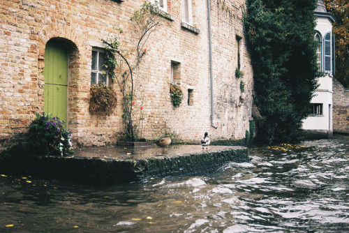 inscendo:  Au fil de l'eau by Alex Maga on Flickr.