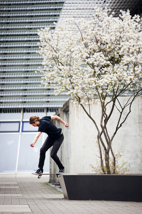infinityc0re:  fugyer:  Beautiful Back Tail.   ~