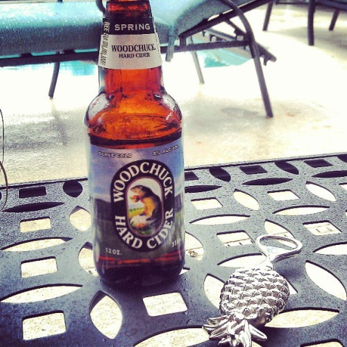 Spring woodchuck and a Spring rainstorm go great together.