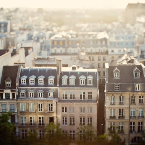 il-ma-vue-nue:  (via Architecture and places / Paris view. Au revoir!)