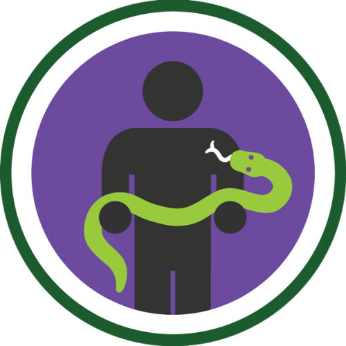 lifescouts:  Lifescouts: Snake-Holding Badge If you have this badge, reblog it and share your story! Look through the notes to read other people's stories. Click here to buy this badge physically (ships worldwide). Lifescouts is a badge-collecting community of people who share real-world experiences online.  i held a snake when i was younger in scotland….it was a weird day i think we were at this zoo place that was attached to some ice cream factory