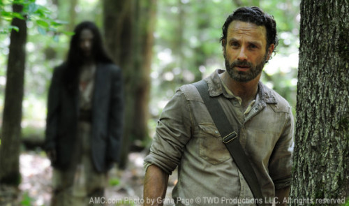 'Walking Dead' season 4 spoilers: The search for food and an alliance