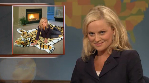 heytinafey:  environmentalists warn wednesday that tigers will become extinct in the wild within a few years if governments do not do something to protect these animals now. well ok.. but then on what do you recommend i make love?