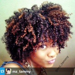 naturalhairdaily:  Check out @mz_tammy's curls. Gorgeous! #naturalhair #teamnatural #naturalista #afro