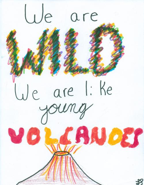 singingtoherbrokenstereo:  We are wild we are like young volcanoes - Young Volcanoes - Fall Out Boy