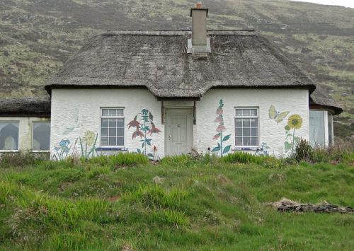 fieldsinireland:  Cottage, Valentia Island, Kerry, Ireland by Wendy_Armstro on Flickr.