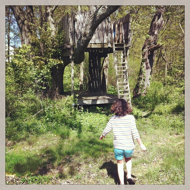 mangomonstermash:  She has a tree house. Jealous. #babysitting #treehouse #spring #fun #kids