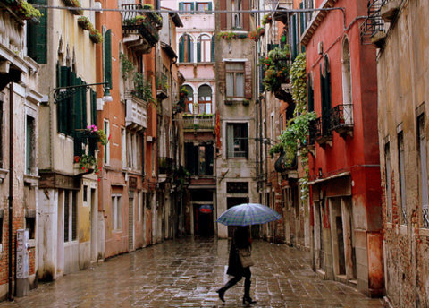 caseyluna:  Umbrella in Venice, by ChloeFaith on Flickr. Love the colors, love the tones, love the rain, love the windows, love the greenery.