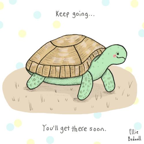 Motivational animals tumblr