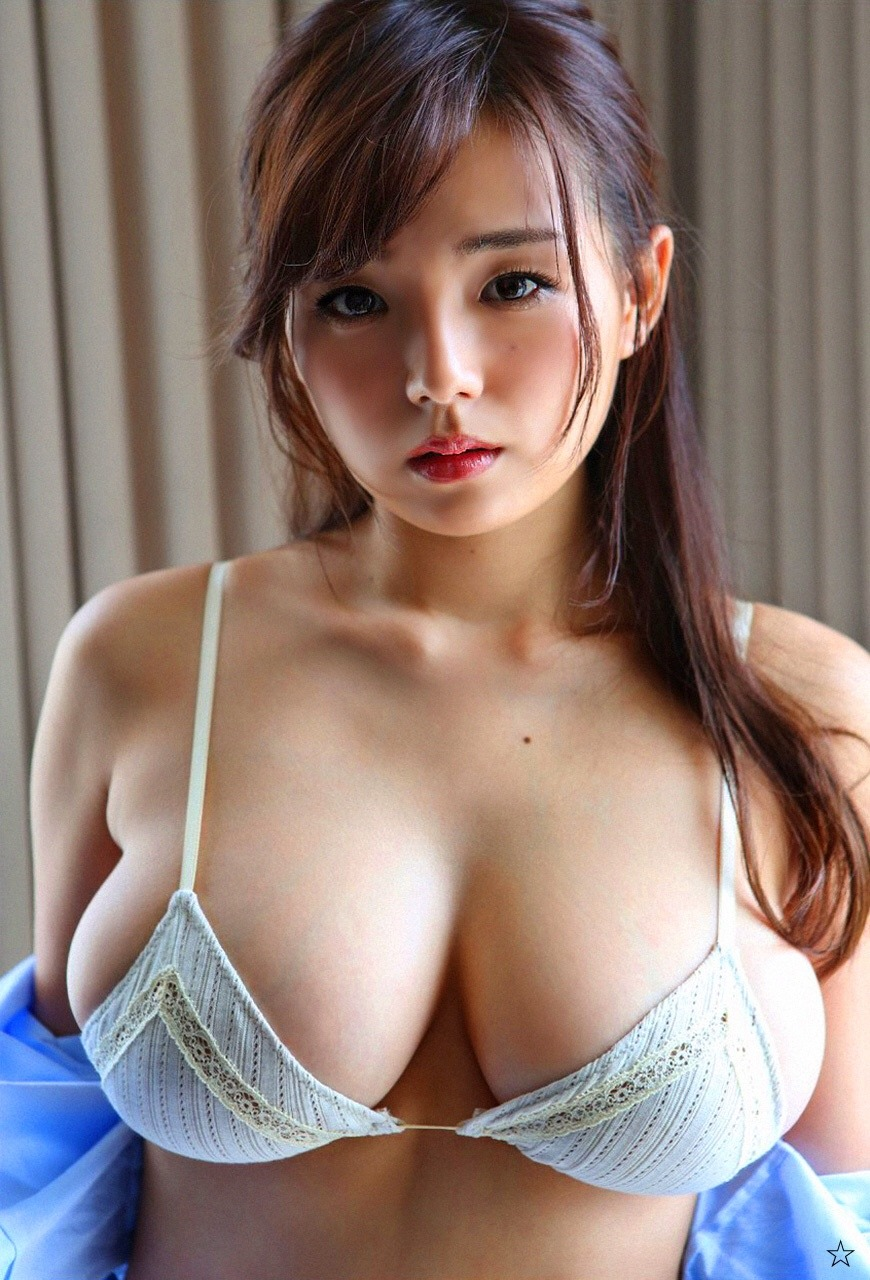 Asian swallow 14
