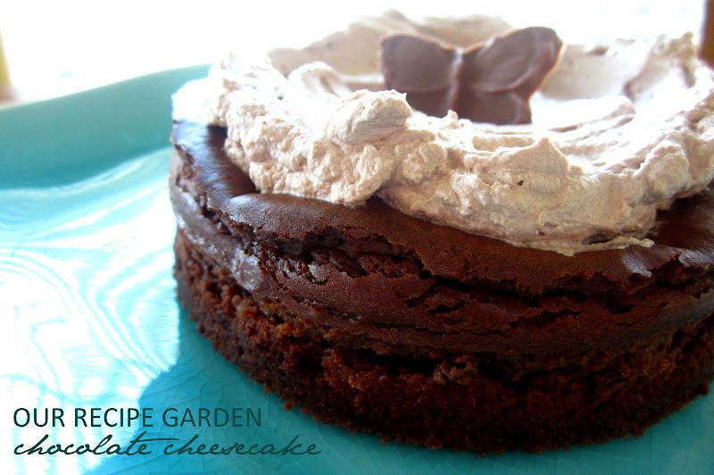 Chocolate cheesecake with chocolate whipped cream.