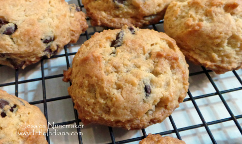 Chocolate Chip Cheesecake Cookies #Recipe — it's dangerous!  Store these in the fridge. They are absolutely amazing. I think they will also be a very welcome sweet treat in the summer, too.