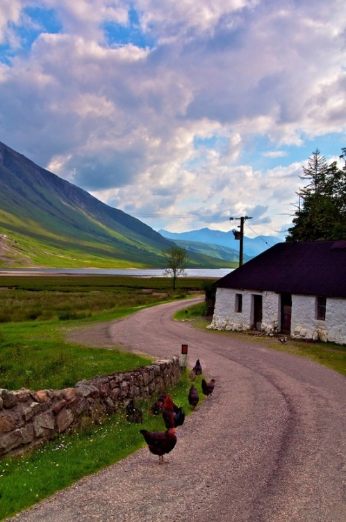 pagewoman:  Loch Etive, Scotland. by Paul Carroll