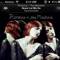 My shit #ceremonials #florenceandthemachine