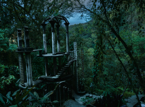 From Night Gardens, National Geographic. Photographed by Diane Cook and Len Jenshel.