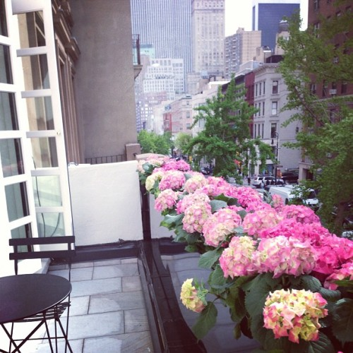 katespadeny:  waving to our new neighbors from the terrace at #789madison.