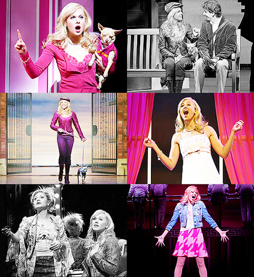 Legally Blonde the Musical ↳ Laura Bell Bundy // Elle Woods