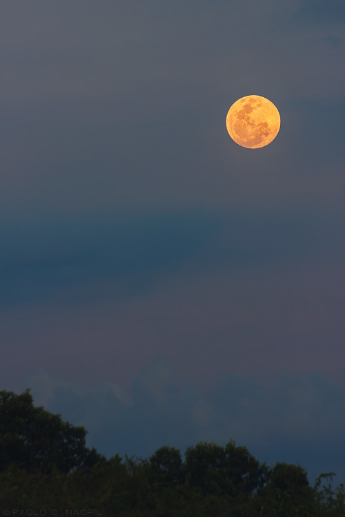 capturedphotos:  Moonrise The moon glows orange as it rises over the shore of Calatagan, Batangas. I was focused on the sunset in the opposite direction and I was very much surprised to see this sight behind me. I hope I caught it while it was still lower on the horizon but I definitely can't complain!  Photographed by: Paolo Nacpil