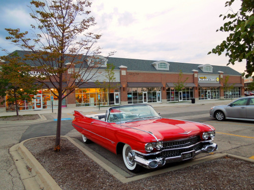 Another sweet day Starring: 59' Cadillac Eldorado (by Hertj94)