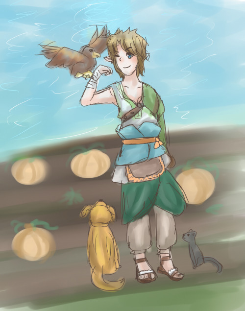 Tp Link sketchy by me(narutoxhinatafan) I tried! Since I rarely draw Twilight Princess Link I went for a quick sketch UvU