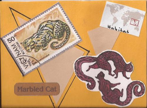 Marbled Cat ATC
