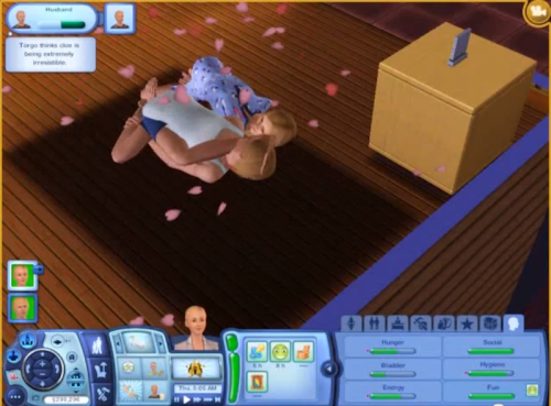 simsgonewrong:  in case you ever wondered what sim sex looks like……..