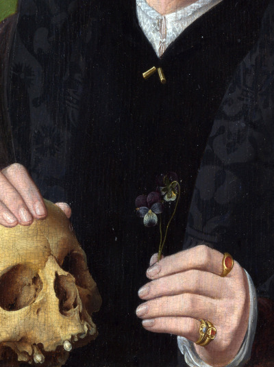 A Man with a Pansy and a Skull,ca.1535 (detail) Follower of Jan van Scorel.