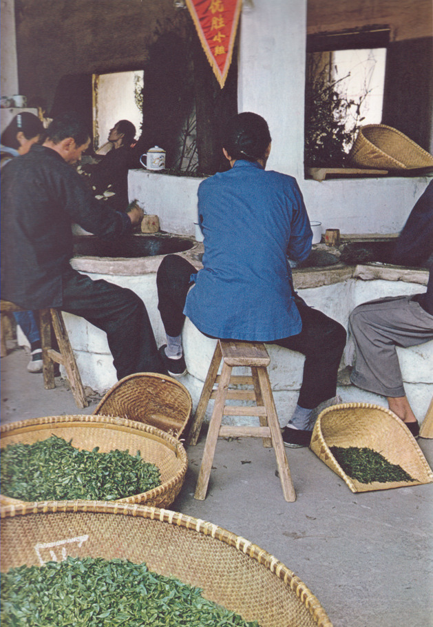 "kicker-of-elves:  drying tea at the tea processing plant of ""Mei-ya-wu"" Brigade, Hangchow  Emil Schulthess 1966  These days the city is Hangzhou — but everything else looks pretty familiar."