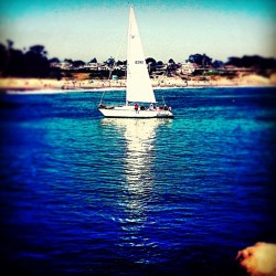 Lonely #Sailboat pulling into the Harbor (at Santa Cruz Harbor)
