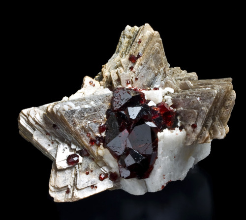 mineralogy-porn:  Interesing specimen on Spessartine Garnets of Muscovite  -Topknot