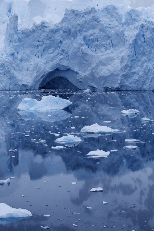 Glacier in Neko Harbor, Antarctica
