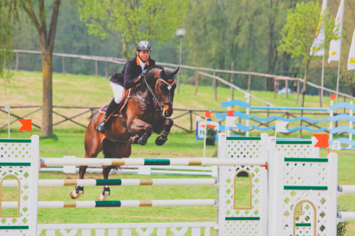 greys-and-bays:   Jumping Lummen '13