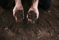 hands nature earth Dirt mud ground mother earth