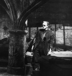 arcaneimages:  Bride of Frankenstein. Karloff