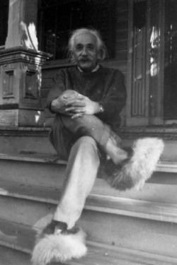 lol-post:  Einstein in fuzzy slippers. You're welcome. http://lol-post.tumblr.com/
