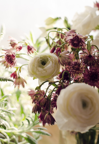 Flowers, a few from the Chelsea flower district, a few from this florist at All Good Thing Market in Tribeca. Too much strong sunlight is making them wilt, but aren't they beautiful?