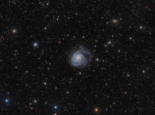 spacettf:  M101 Deep Wide Field by Pegaso0970 on Flickr.