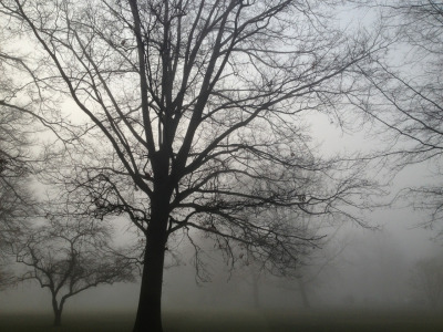 Foggy morning on the Circle at Lawrenceville.