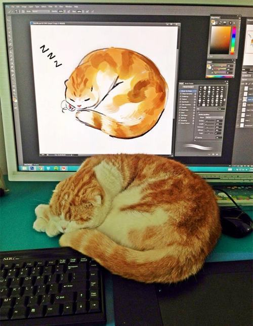 Cats: the best font of inspiration eversource!