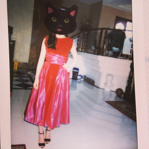 #fujifilm #cat #neck #vintage#dress 3✨💖🐱