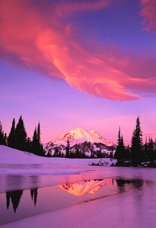 jadehoiby:  Mt. Rainier, Seattle, Washington   Dang.