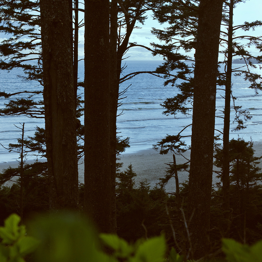 Marlo Lavonne: Long Beach, BC. 2011. Getting to Pacific Rim National Park involves a long drive on an extremely narrow and windy roller coaster of a road (for those not traveling by boat or float plane). When you finally arrive at this wild and remote place, and start getting glimpses of the ocean as you hike down toward it, it feels even more special, like you've made it to the edge of the world.