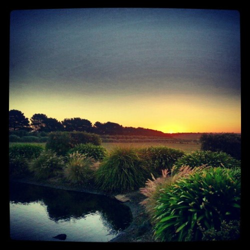 #sunset…  (at Rusty Gate Estate)