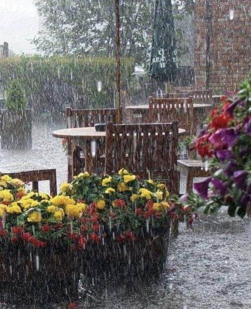 #rainstormpics#rain#weather#nature#wet#storm#gloomy#raining#pluviophile#rainyday#rainymood#mood