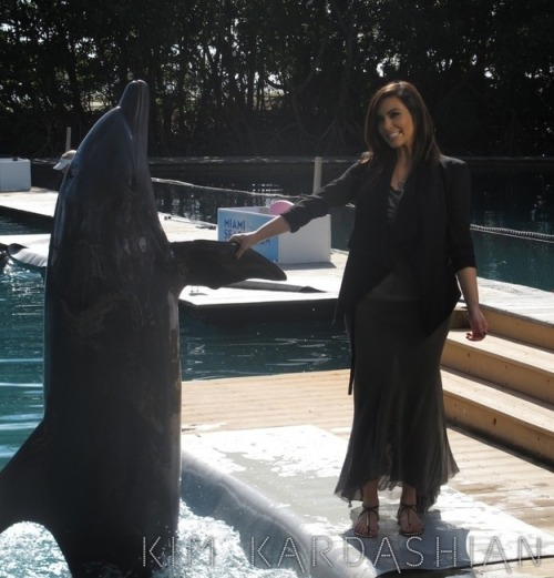 Kim Kardashian shaking hands with a dolphin. Alright.