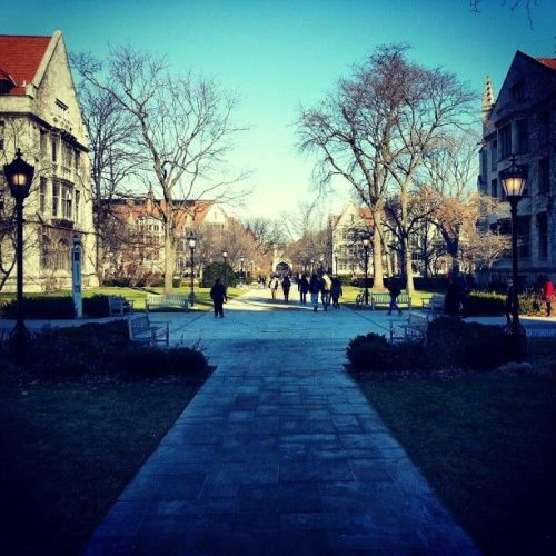 "inaperpetualdream:  First day of winter quarter. The campus is alive again!  not entirely sure ""alive"" and ""winter quarter"" belong so close together."