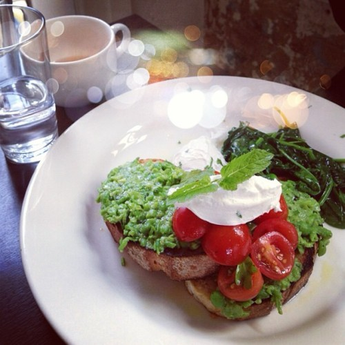 saboskirt:  Super healthy and delicious breakfast #saboskirt
