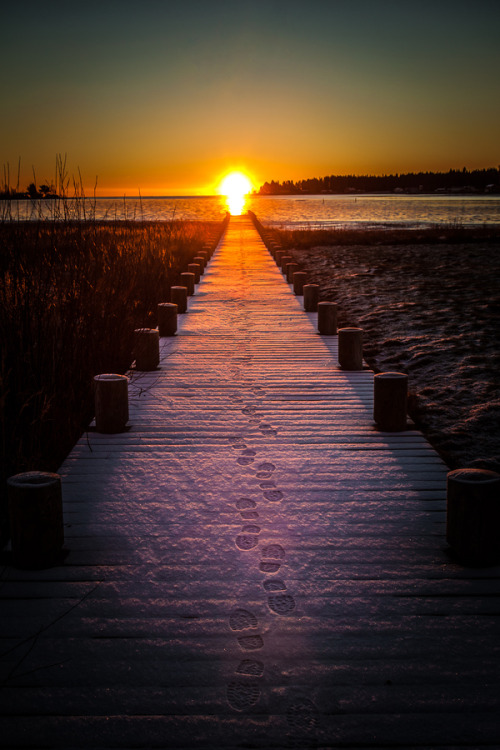 "dontcallmebetty:  (via 500px / Photo ""Sunrise"" by Håkan Johansson)"